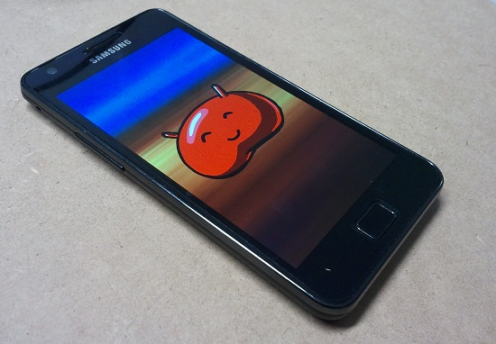 Galaxy S2, installare Android 4.1.2 Jelly Bean no brand