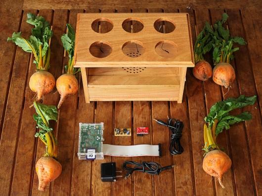 Raspberry Pi, BeetBox, fare musica con le barbabietole